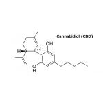 Enecta 10% CBD Έλαιο Κάνναβης (1000mg)